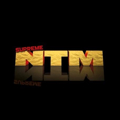 Concert Supreme NTM in Nantes